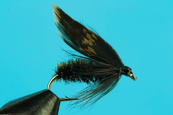 Alder wet fly discount trout flies fishing flies for Cheap fly fishing flies