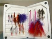 Salmon And Steelhead Assortment with Classic Morell Box