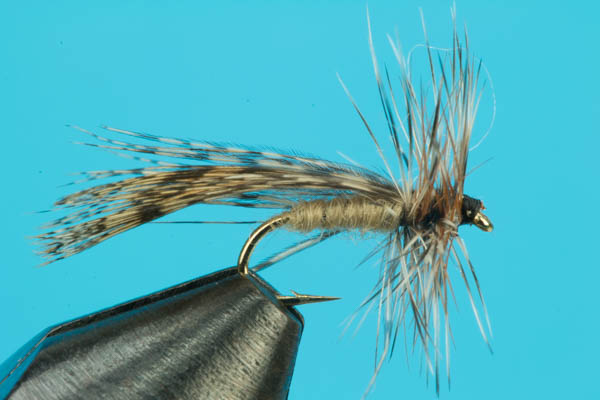 Spent Wing Caddis