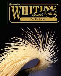 Whiting Hackle