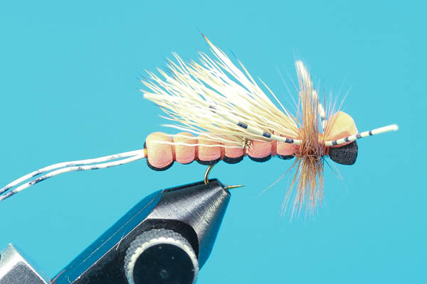 Bandit Salmonfly
