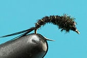 Black Caddis Pupa