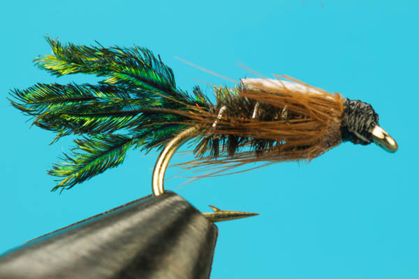 Zug Bug-Discount Flies-BigYFlyCo.com