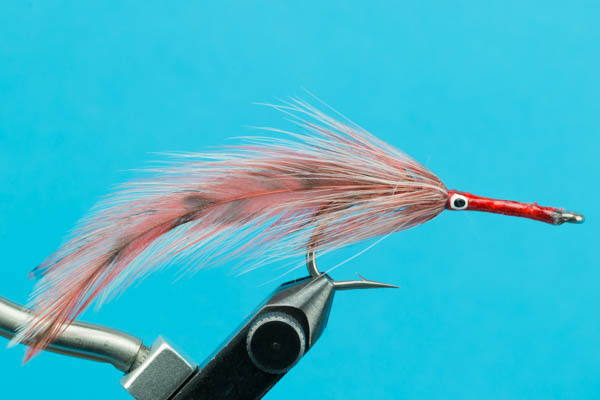 Tarpon Red/White