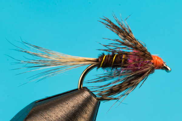 Frenchie Soft Hackle