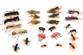 Terrestrials Assortment--24 Flies