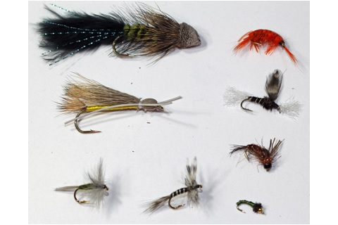 Sierra Nevada Assortment--24 flies