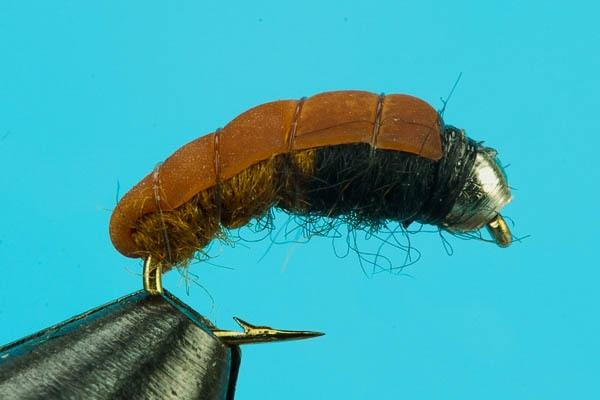 Bottom Bouncing Caddis-Beadhead