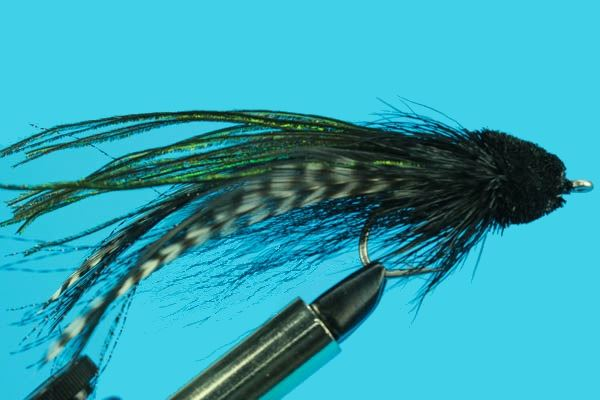 Andino Deceiver Unweighted