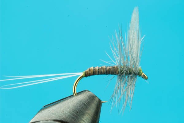 Blue Wing Olive Quill Body