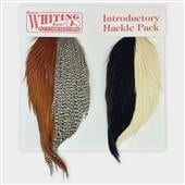 Whiting Introductory Hackle Pack